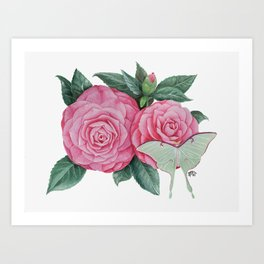 Camellia - Flowers and Luna Moth Painting Art Print