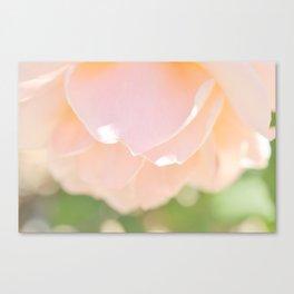 Petal Soft Canvas Print