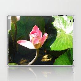 Hanalei Lotus, by Mandy Ramsey, Haines, AK Laptop & iPad Skin