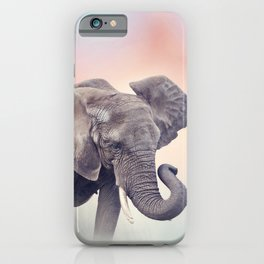 African Elephant walking in the grassland at sunset iPhone Case