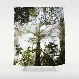 The Trees and the Sky Shower Curtain