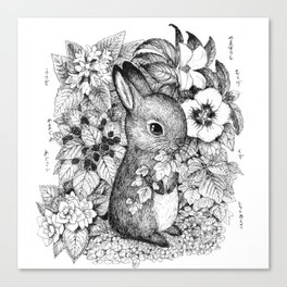 a hare Canvas Print
