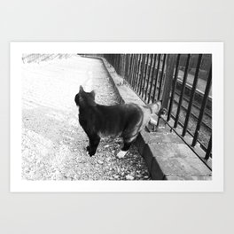 Observing Railway Cat Black & White Art Print