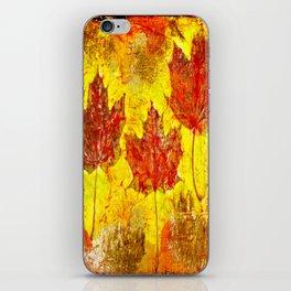 Autumn Delight  iPhone Skin