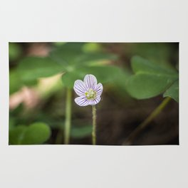 Wood Sorrel Flower Rug