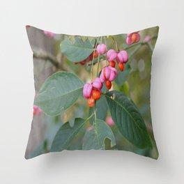 Spindle Tree (Euonymous europaeus) Throw Pillow