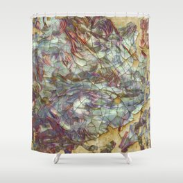 Spaces in Time Shower Curtain
