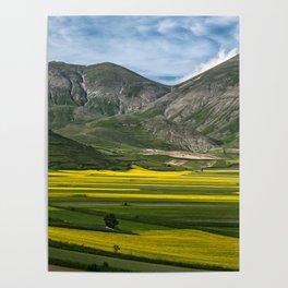 The fields of Castelluccio Poster