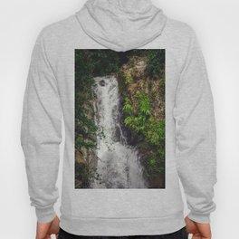 Rainforest Waterfall Hoody