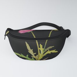 Centaurea Moschata  Mary Delany Delicate Paper Flower Collage Black Background Floral Botanical Fanny Pack