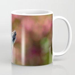 Meerkat. Coffee Mug