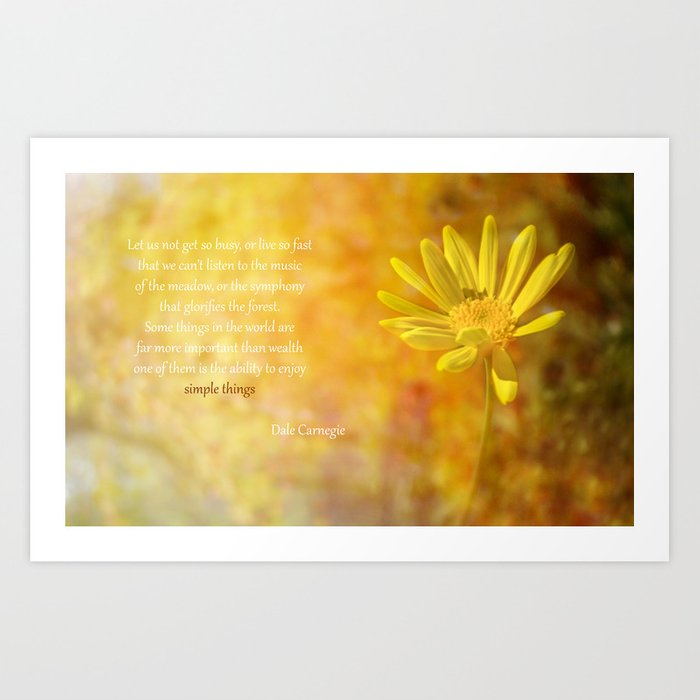 Yellow Daisy (Euryops) Art Print