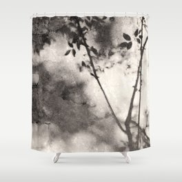 Leaves and Branches Shadows on Stone Wall Shower Curtain