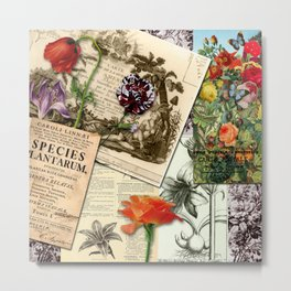 Botanical studies Metal Print