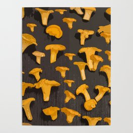 Chantterelles On A Dark Grey Background - Autumn Harvest - #Society6 #buyart Poster