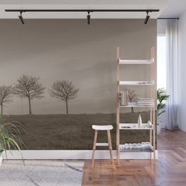 Naked trees during a foggy morning - Cove Bay, Aberdeen, Scotland Wall Mural