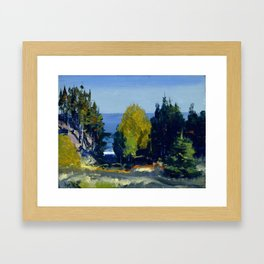 George Bellows - The Grove, Monhegan, 1913 Framed Art Print