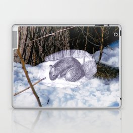 Lovely Squirrel in Montreal Laptop & iPad Skin