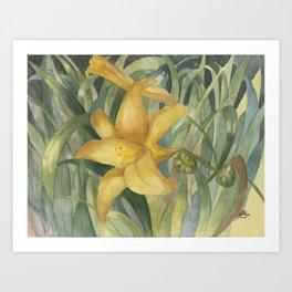 Sunlight Blossom Art Print
