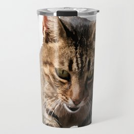 Tabby Looking Down Background Removed Travel Mug