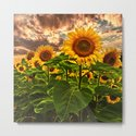 Sunflowers at Sunset by kathyweaver