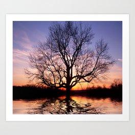 Sunset Silhouette Tree Art Print