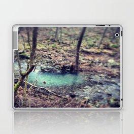 Forest Pond Laptop & iPad Skin