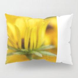 Summer Warmth Pillow Sham
