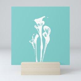 Calla Lily - Aqua Mini Art Print