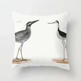 199 Yellow-crowned Night Heron (Ardea violacea) 200 Lawyer (Himantopus nigricollis)  from Zoology of Throw Pillow