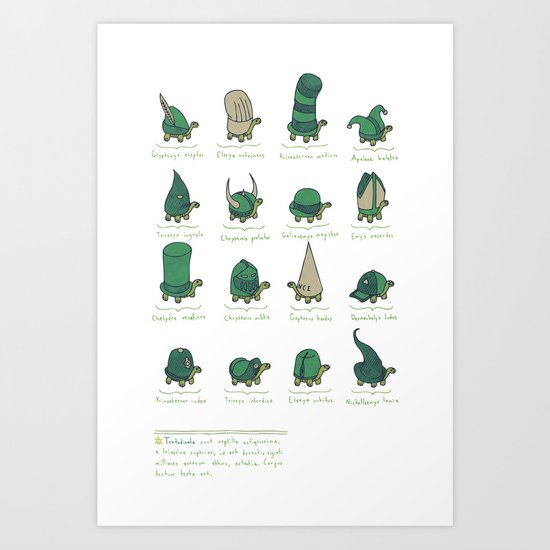 A Study of Turtles Art Print