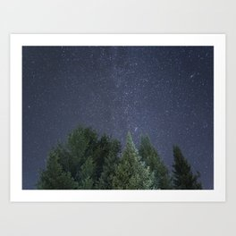 Pine trees with the northern michigan night sky Art Print