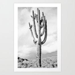 Loner #society6 #decor #buyart Art Print