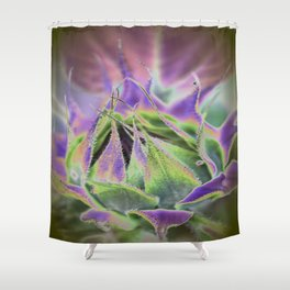 Sunflower Bud Abstract Shower Curtain