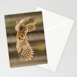 Tawny Owl in Flight Stationery Cards