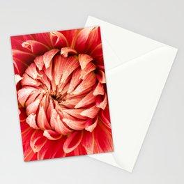 Parkland Glory Dahlia 2 Stationery Cards