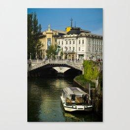 around Ljubjana Canvas Print