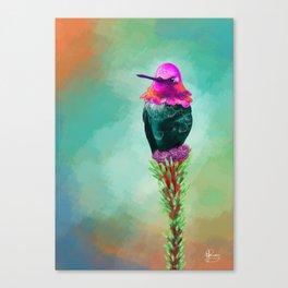 Pretty litte hummingbird Canvas Print