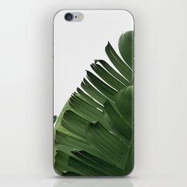 Minimal Banana Leaves iPhone Skin