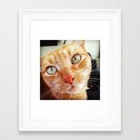 jenna kutcher Framed Art Prints featuring Jenna by Pop Art Pet Portraits