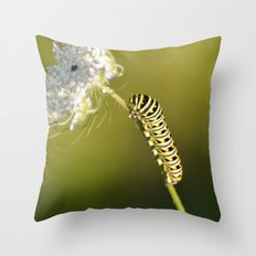 Catapillar on Queen Anns Lace - An Art Print Throw Pillow