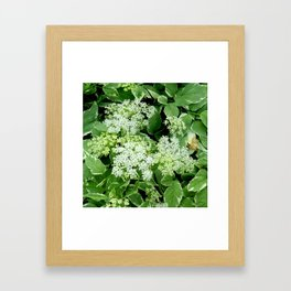 AWESOME DELICATE GREEN LACE FLOWERS Framed Art Print