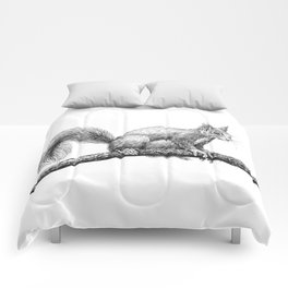 Squirrel drawing Comforters
