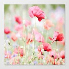 Poppy pastels Canvas Print