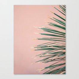 Green on Coral | Botanical modern photography print | Tropical vibe art Canvas Print