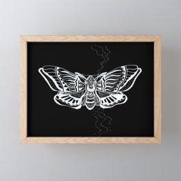 Death's Head Moth Framed Mini Art Print