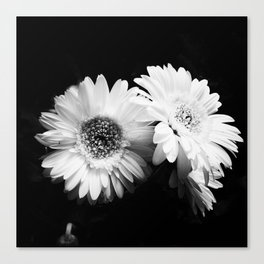 Flowers in Black and White - Nature Vintage Photography Canvas Print