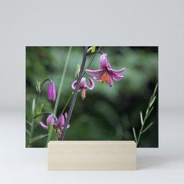 pink lilium martagon Mini Art Print