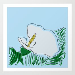 White Calla  Art Print