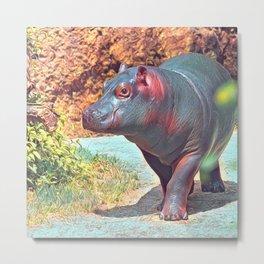 Impressive Animal -Hippo Metal Print